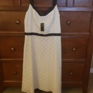 NWTS Ann Taylor Loft fit and flare size 6